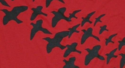 women of los angeles ornithology