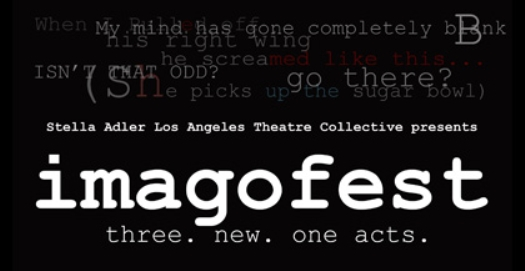 imagofest2011